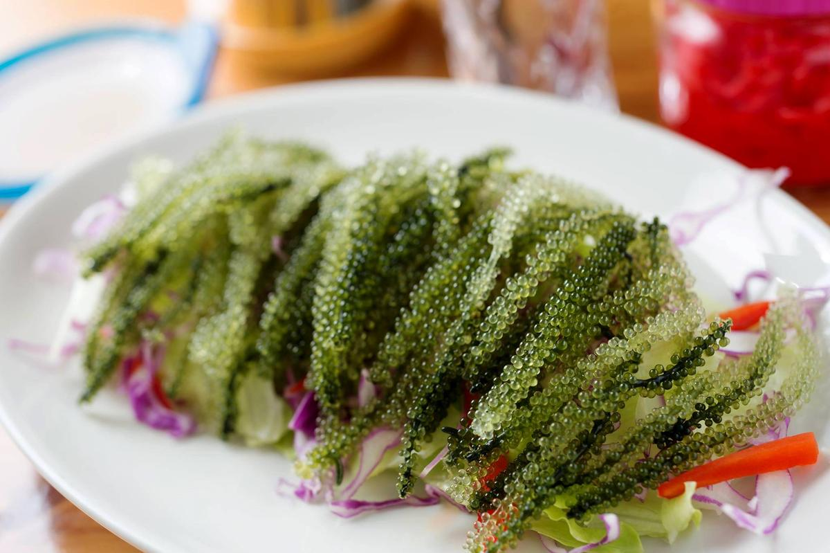 店內吃得到產自久米島的新鮮海葡萄,口感很像素的飛魚卵,脆脆的,一口咬下在嘴裡爆裂,迸出海水的鹹香。(日幣500圓/份)