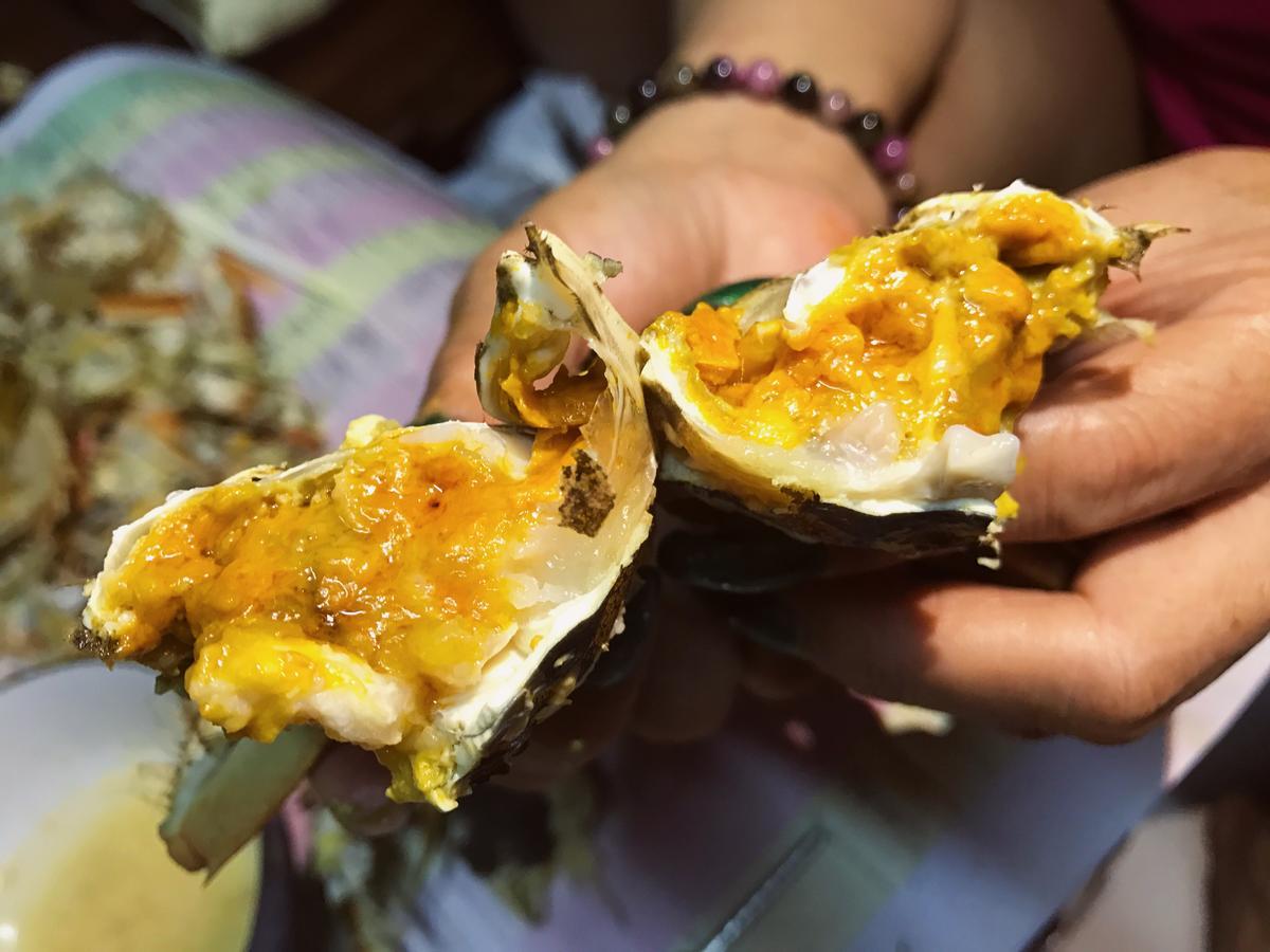 公蟹只有膏沒有黃,母蟹則相反,透明的部分是蟹膏,黃色的部分是肝胰腺,負責蟹的各種內分泌跟身體機能,這批蟹看起來是健康寶寶。
