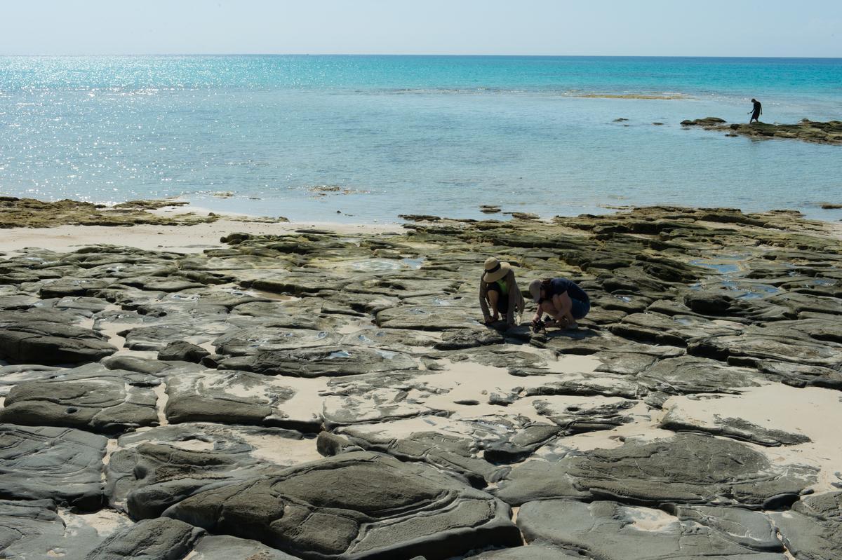 奧武島上的疊石海岸美景,只有退潮期間才看得到。