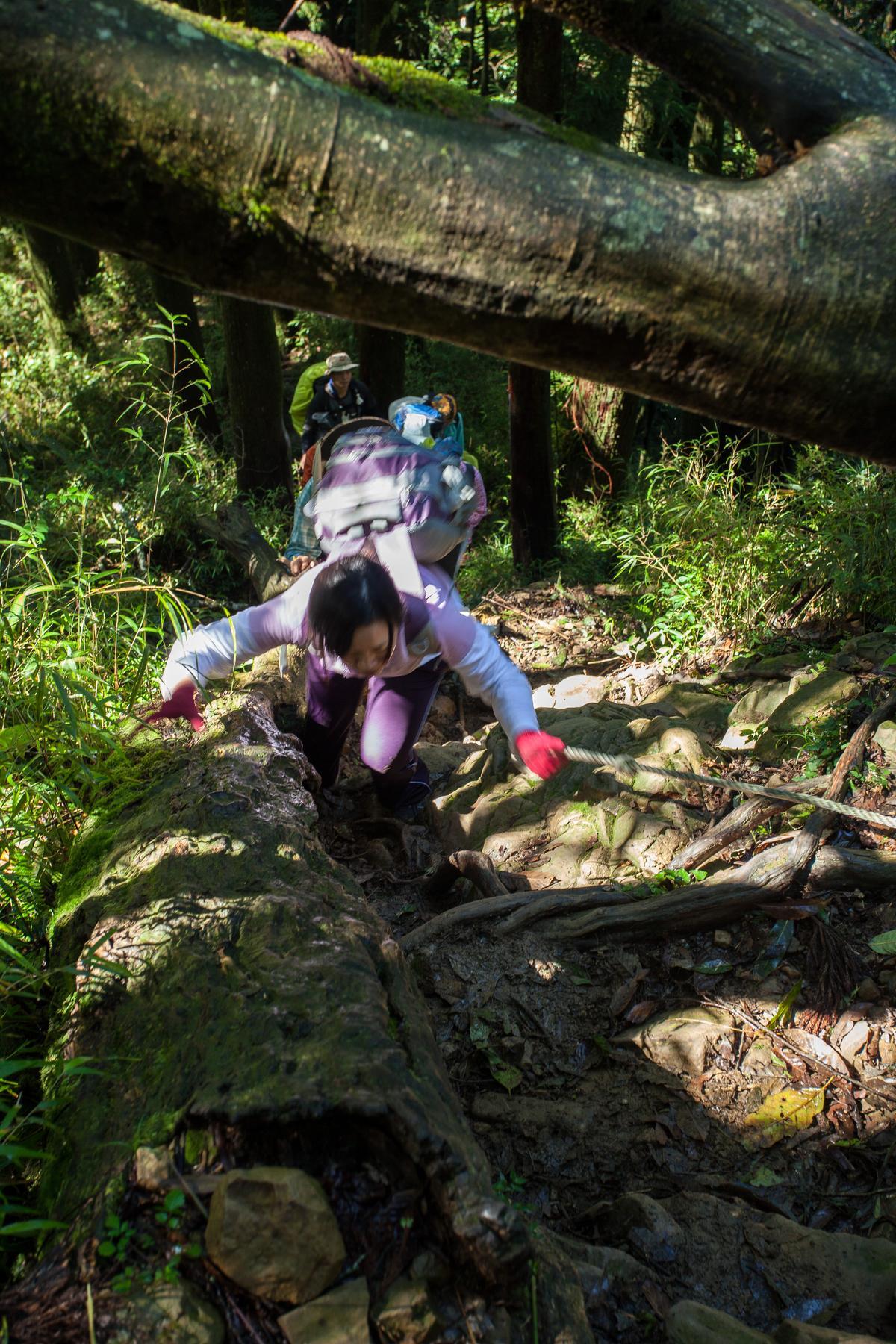 彎下腰是一種登山哲學,只有彎下才能繼續前進。
