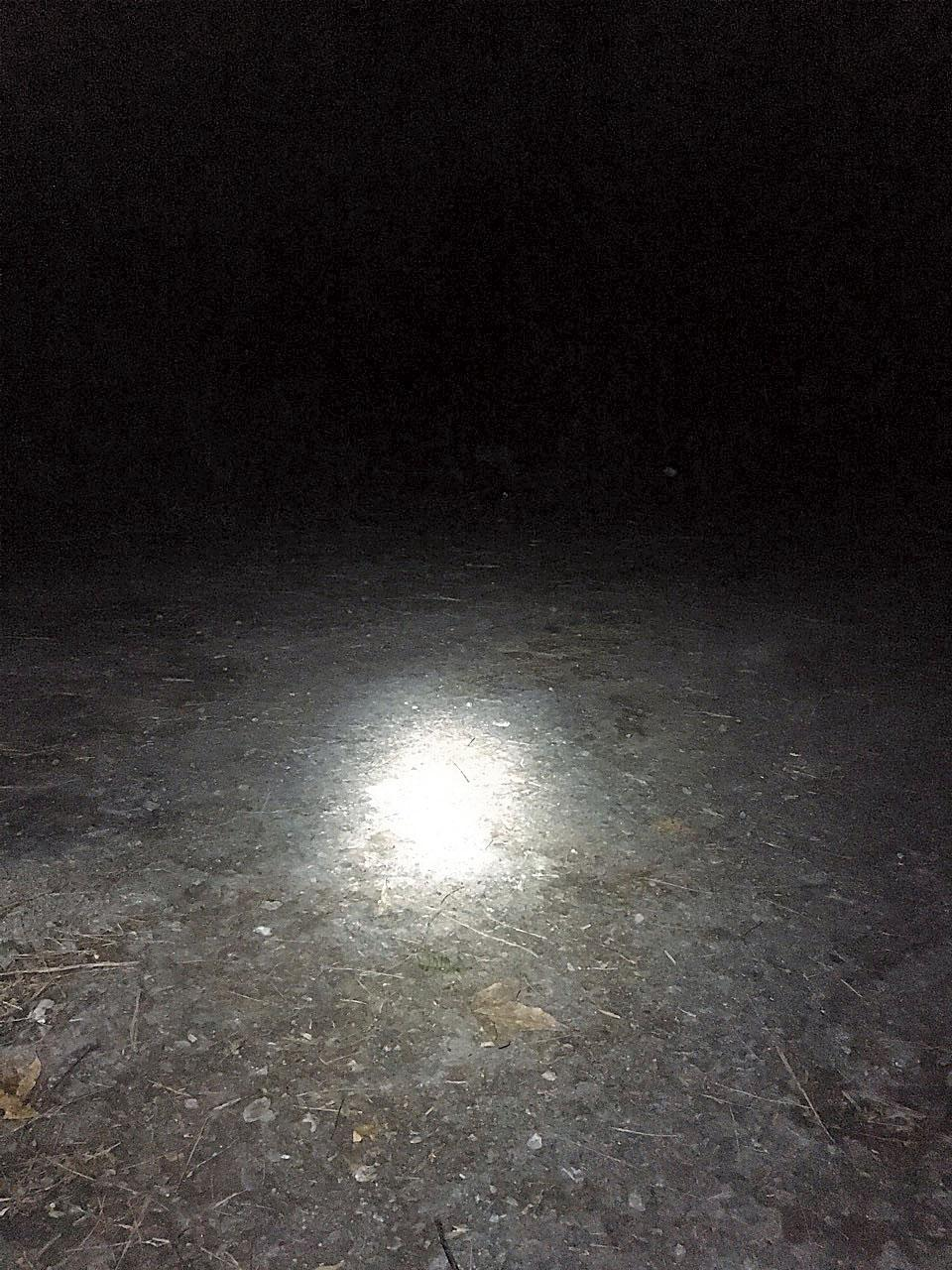 文大推廣部職員抵達加羅湖時已經伸手不見五指,只能仰賴頭燈的微弱光線,這時才發現山青記錯時間,面對無人搭帳篷、準備晚餐的窘境。(文大推廣部職員提供)