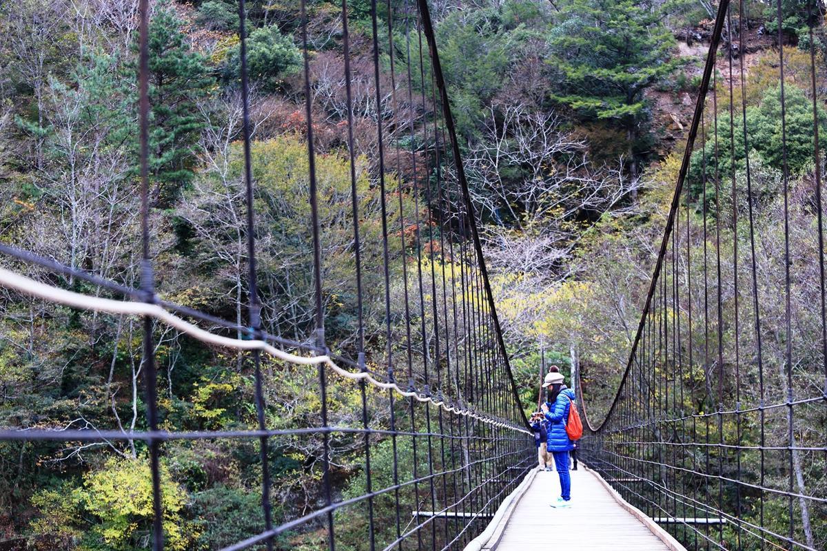 走過司界蘭溪吊橋之後,往回頭看,就能看到山壁上的「老酋長面石」。