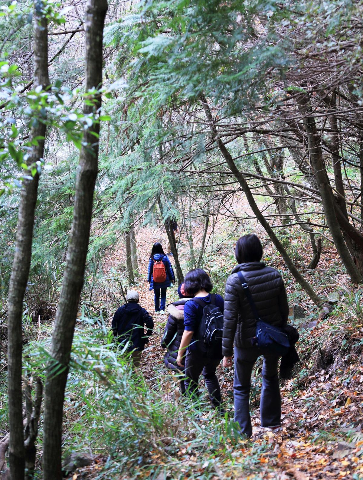 通過環山部落的獵人步道,就能前往泰雅族的遺址。