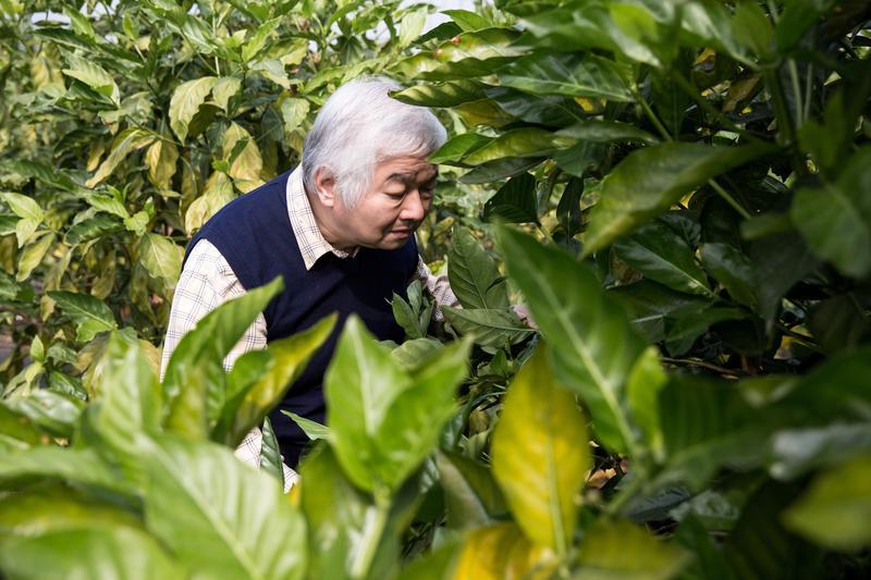 柏諦集團總裁李志誠喜愛鑽研中草藥,至今仍會上山下海做田野調查。
