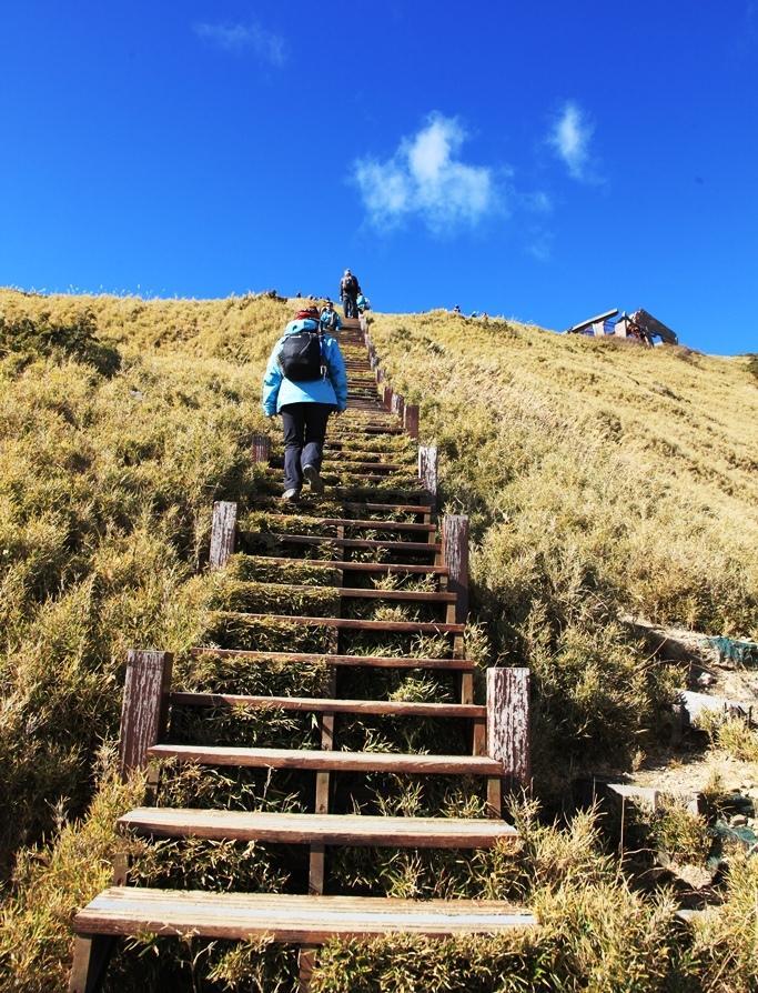 往合歡東峰的路程,是一連串的木製樓梯,愈走愈喘、愈高愈美。
