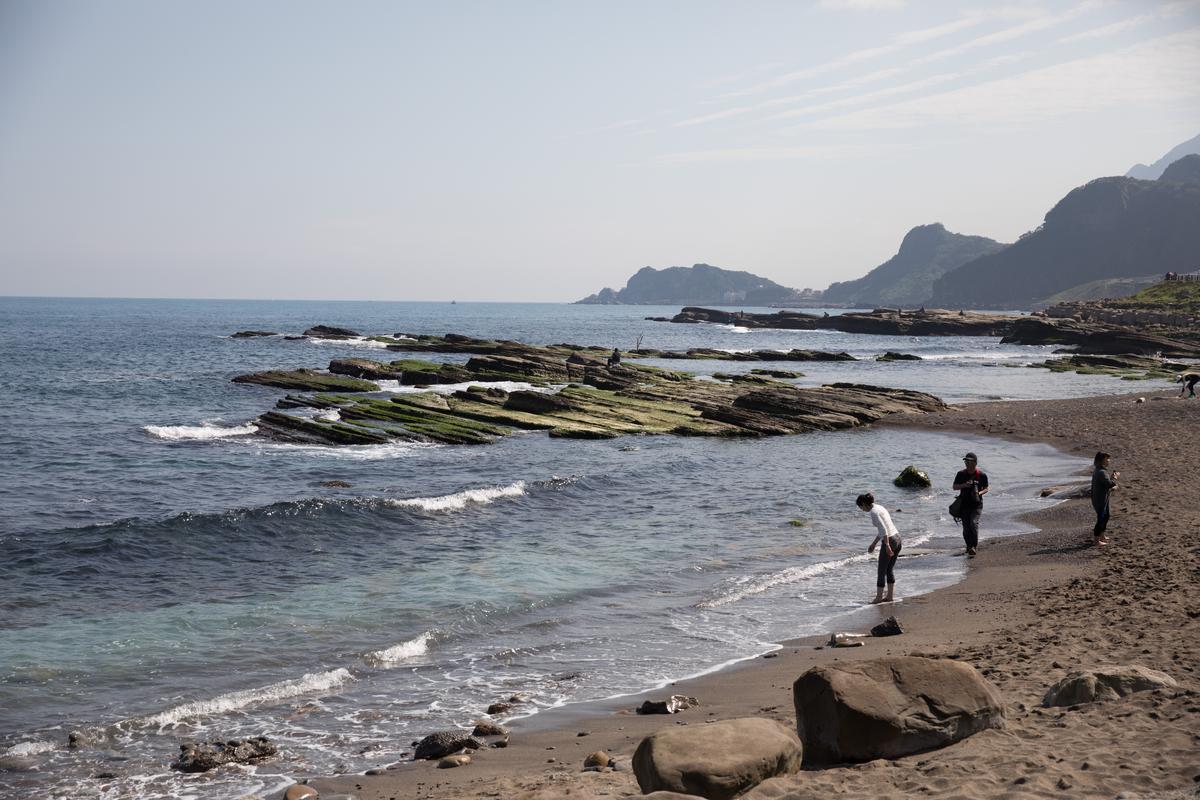 基隆的潮境公園,近年來進行海洋保育很有成績。
