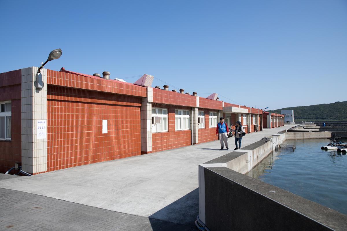 水生生物研究暨保育中心,也就是傳說中的「海龜病房」。