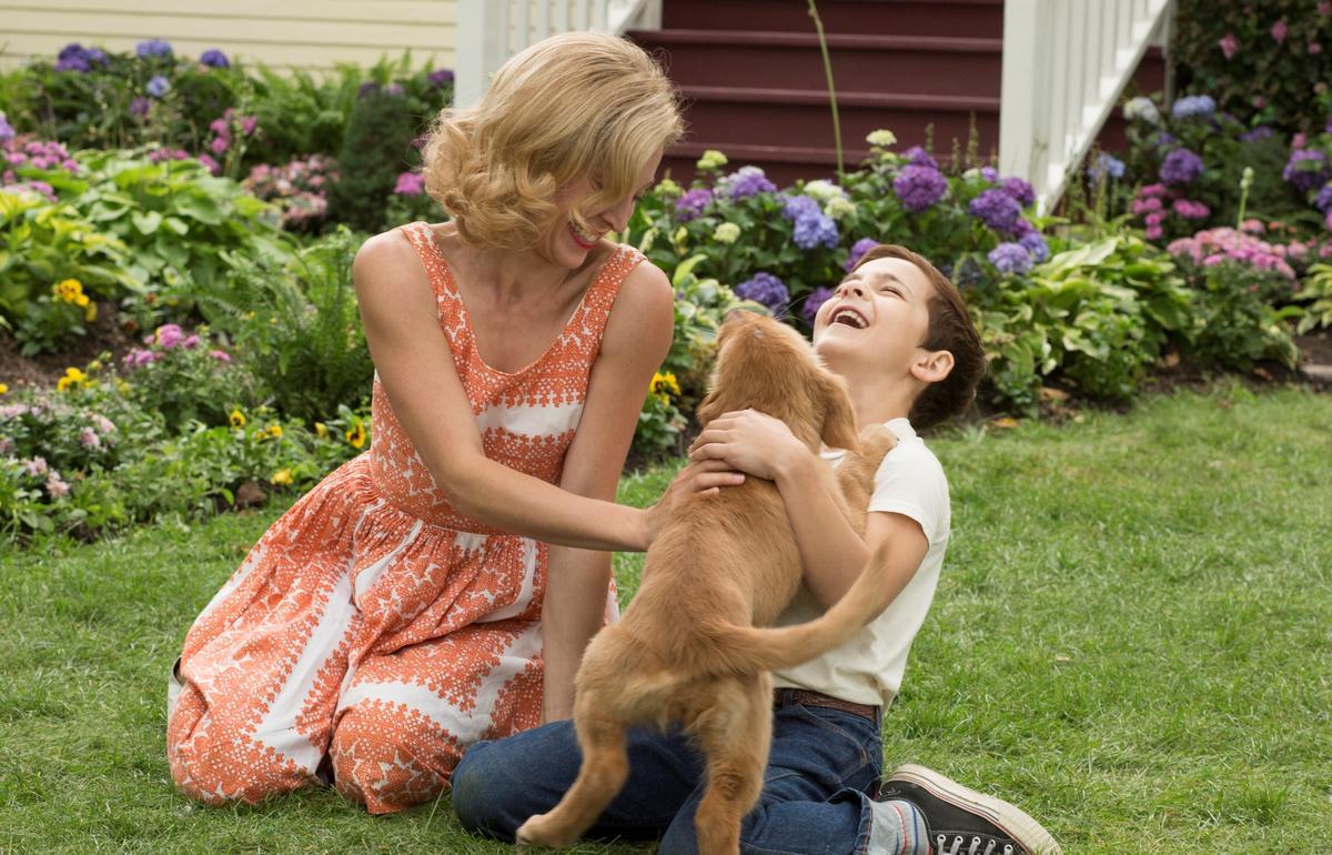 《狗臉的歲月》、《忠犬小八》導演萊斯霍斯壯的最新力作,《為了與你相遇》要再次讓觀眾流下眼淚。(環球影片)