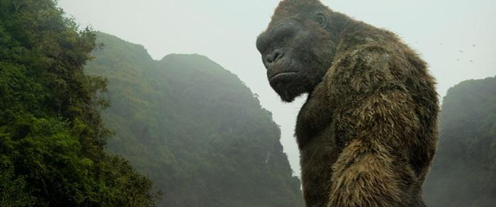 影史的經典巨獸金剛,在《金剛:骷髏島》一片被重新打造。