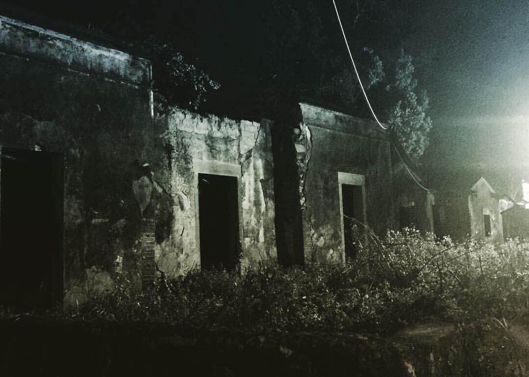 《救殭清道夫》將於3月17日在台上映。