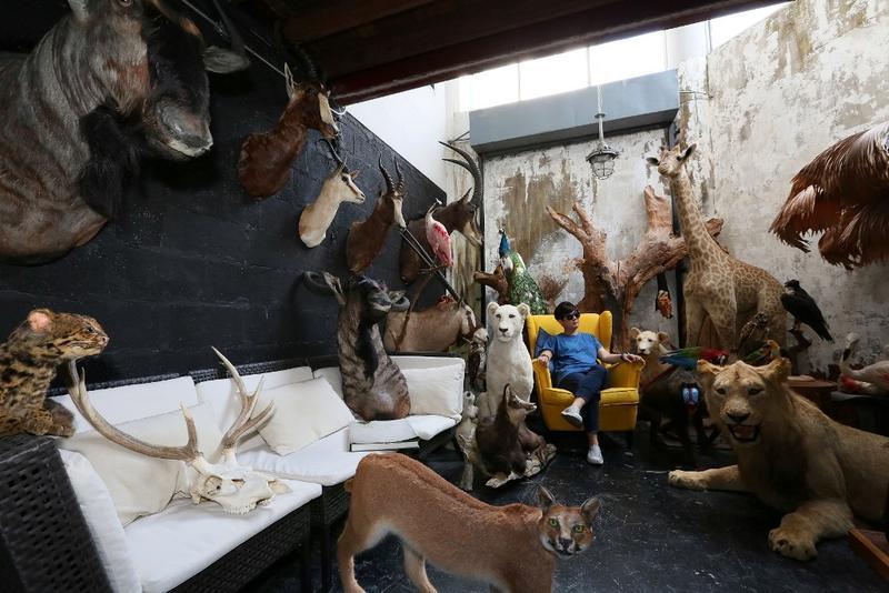 曼谷的詭異風格旅館,裡面有上百隻的動物標本。