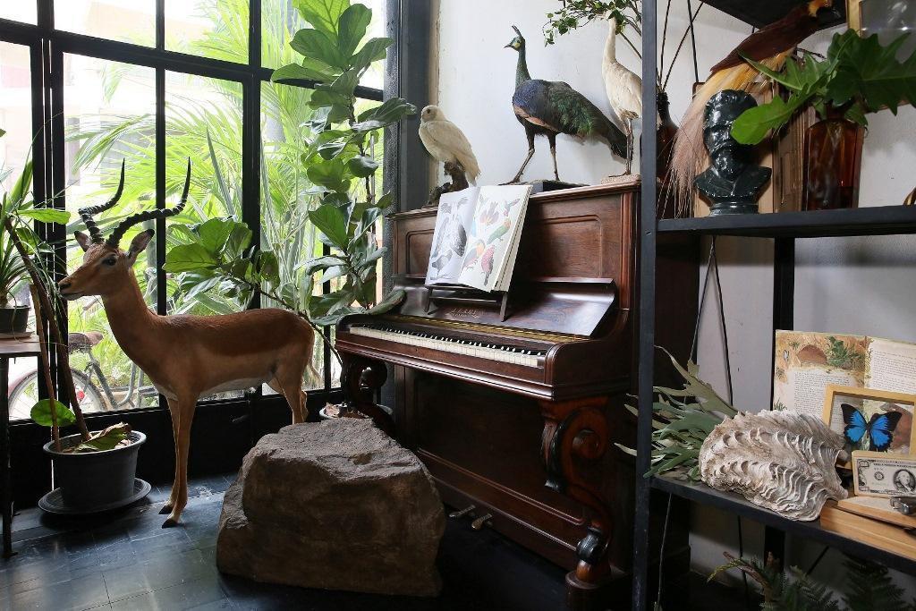 鋼琴的座椅是石頭,旁邊也有動物圍繞。