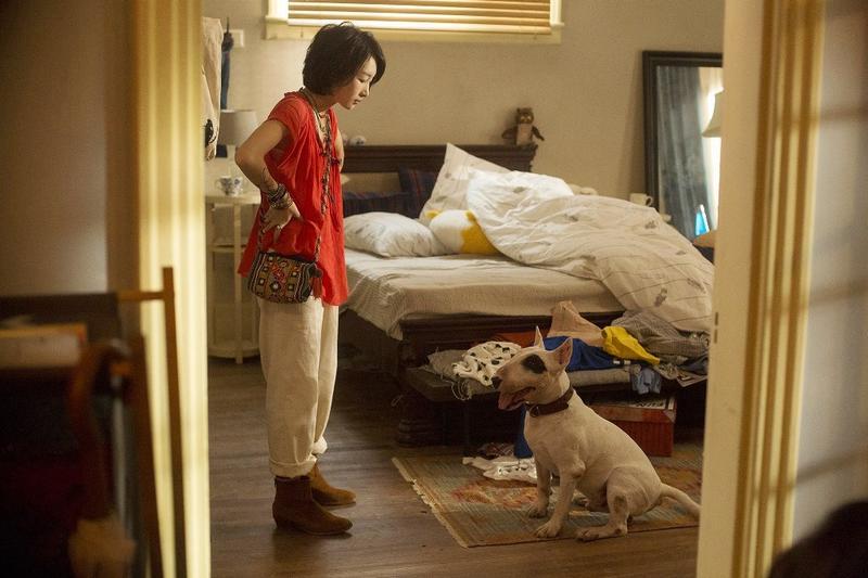 周冬雨和金城武雖然在《喜歡你》談起戀愛,但戲外周冬雨對金城武很無感,反倒天天黏著片中狗演員「老板」不放。