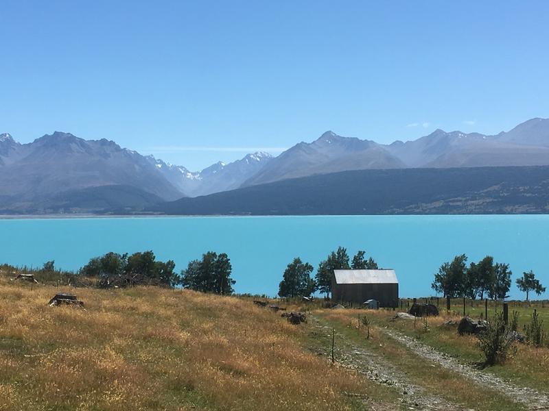 庫克山腳下的Pukaki湖。