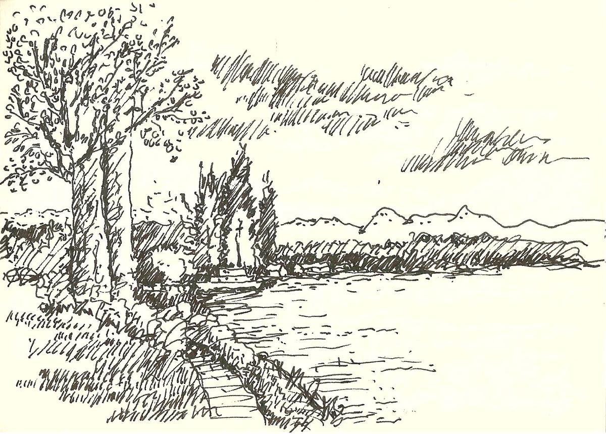 Lake Te Anau湖邊小徑