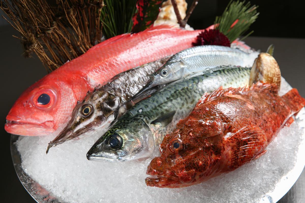 每天有不同的新鮮漁獲,採訪這天有金蘭魚(上起)、八角魚、水針魚、蜜柑鯖魚和石狗公。