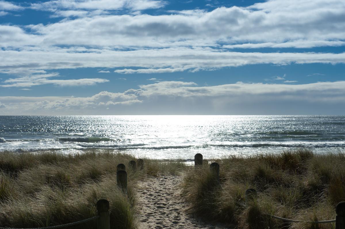 日出時分,豐盛灣海面閃爍金光。