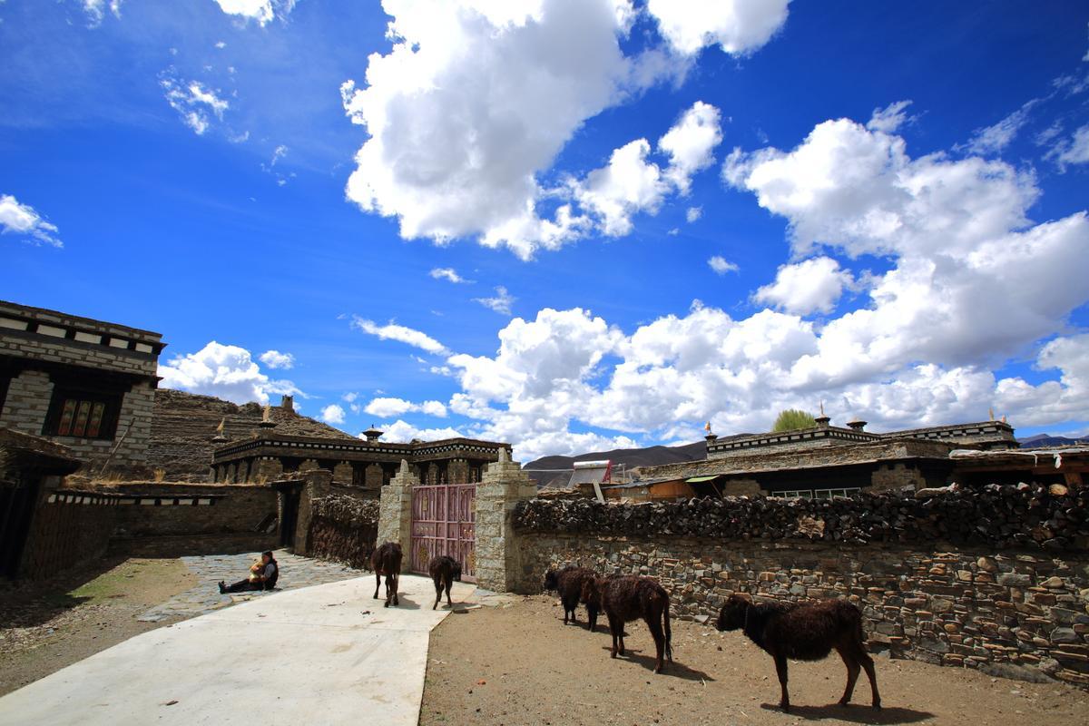 從日瓦前往稻城的路上,會經過「俄洛村」,土色的藏房與青楊林仿如南疆邊塞的風情。