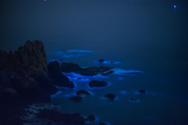 夜幕低垂,東引的「國之北疆」海域,閃爍上眼的是全台最北的藍眼淚美景。