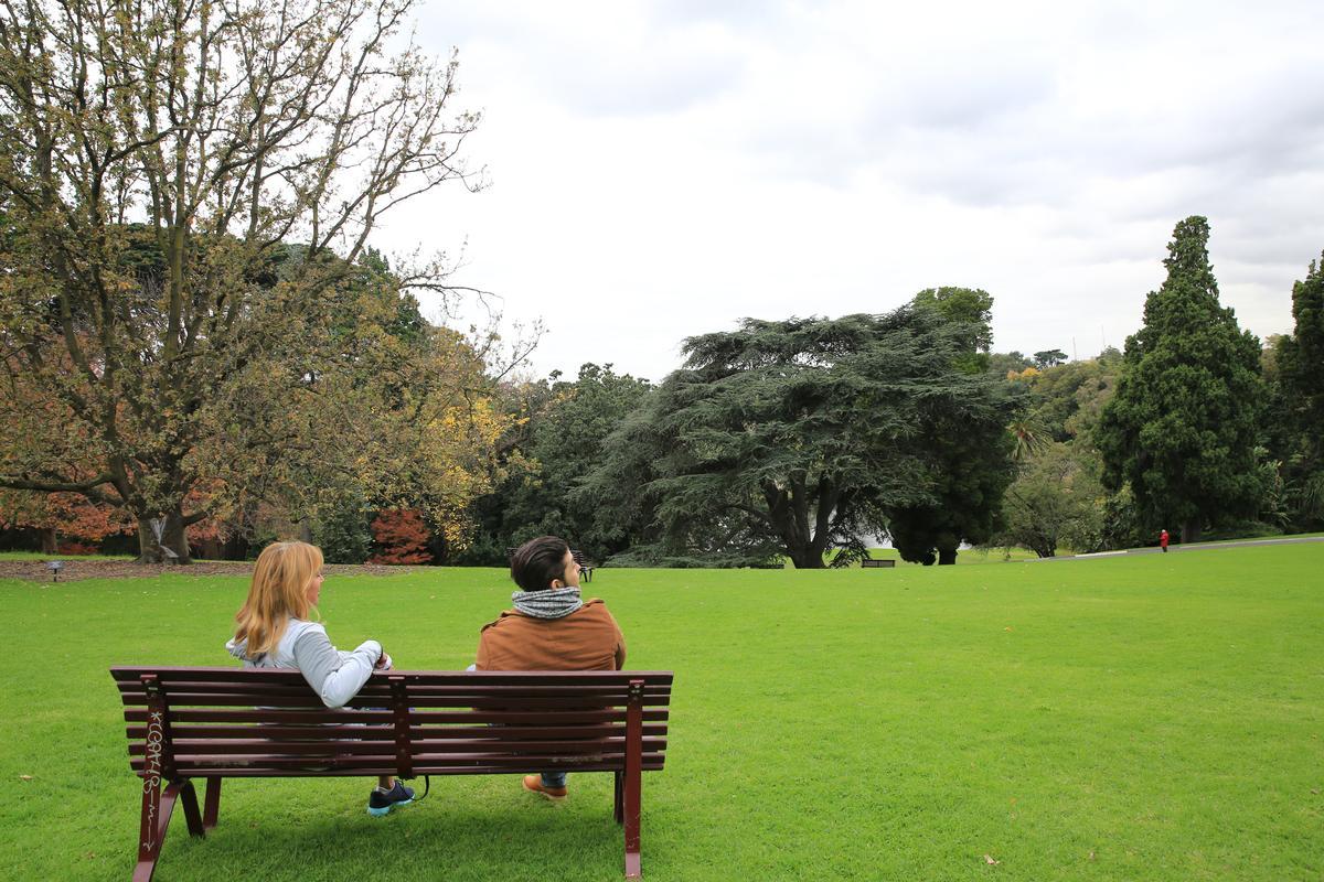 每天早晨,許多墨爾本來到皇家植物園,或散步或休憩,當作一天美好的開始。