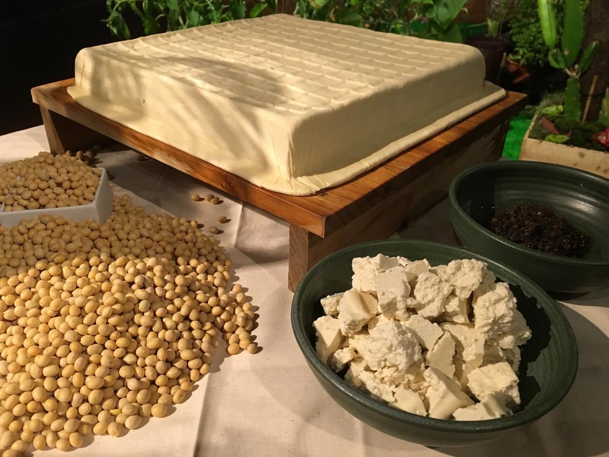 RAW的夏季菜單有用花蓮泥火山豆腐做的義大利麵。