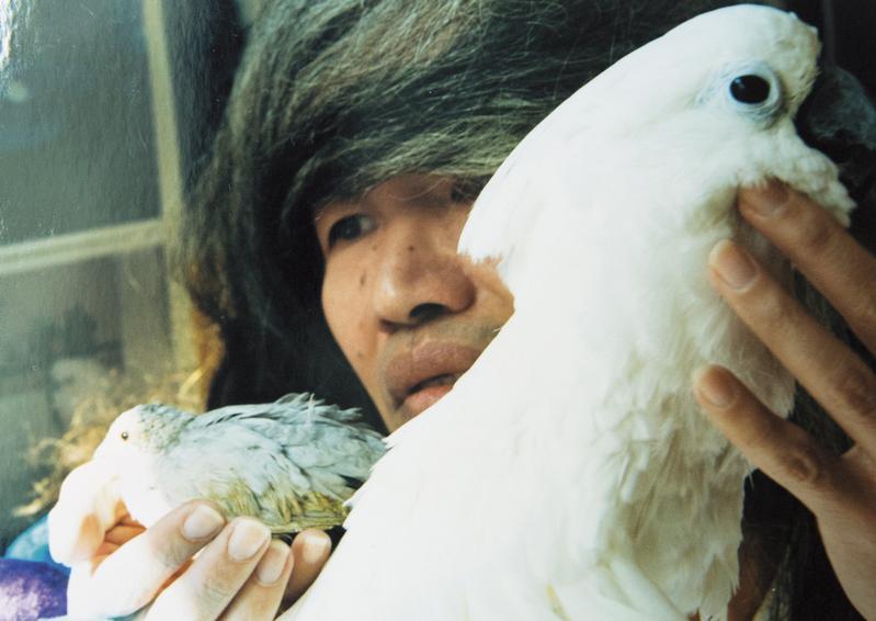 李幼鸚鵡鵪鶉與心愛的小鳥合影,他認為這張照片很像幾米插畫,滿意得不得了。(李幼鸚鵡鵪鶉提供)
