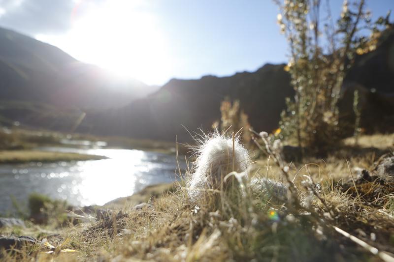 此行最後的目的地是海拔4,000公尺的高山湖泊。