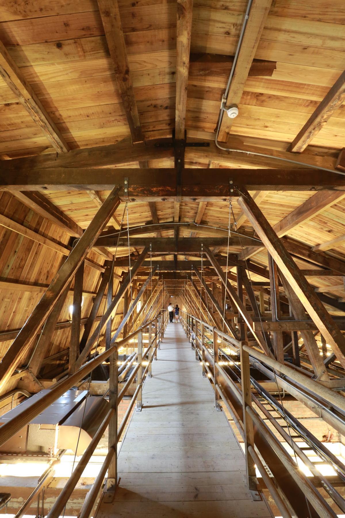 貓道是工程術語,夾在屋頂和天花板之中。