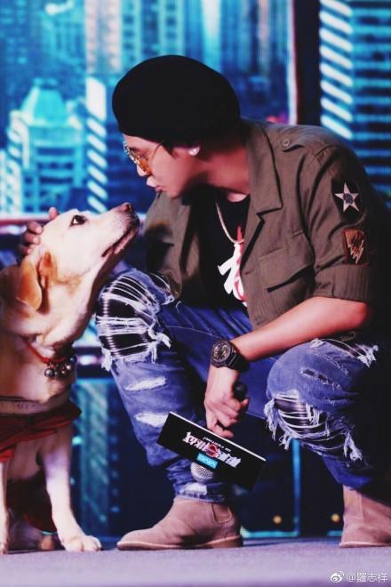 羅志祥日前上中國綜藝節目,與1隻工作犬再度相逢,並希望牠退休愉快。之前他還貼文表示,希望大家不要趕走在便利店門口吹冷氣的流浪狗。(圖翻攝自微博)