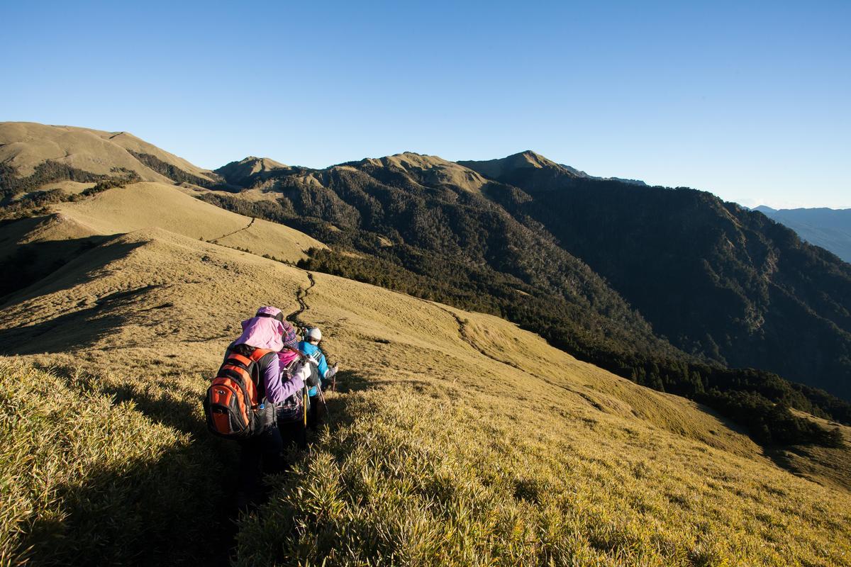 奇萊南華的坡度平緩,是高山百岳入門路線。