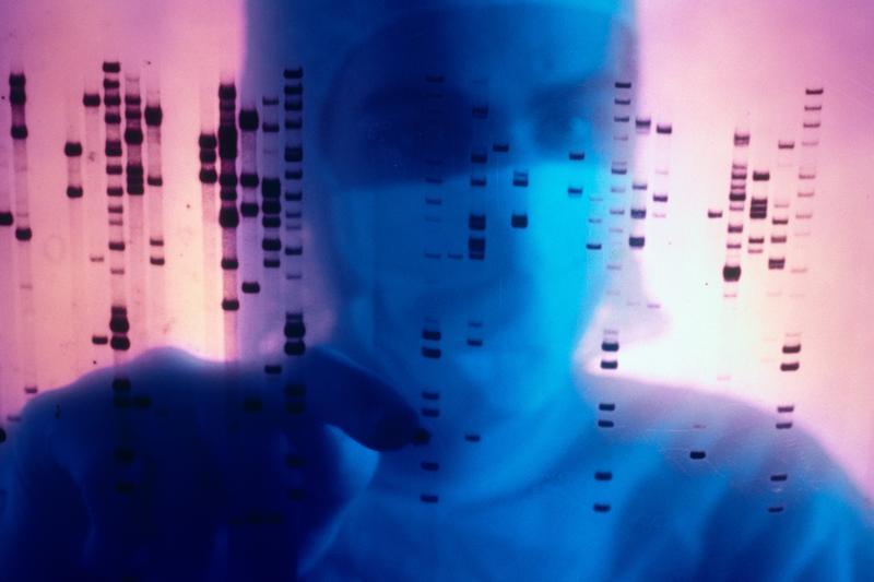 2000年6月26日,科學家宣布人類基因組初步的排序完成,掀起了基因數據研究的蓬勃發展。(東方IC)