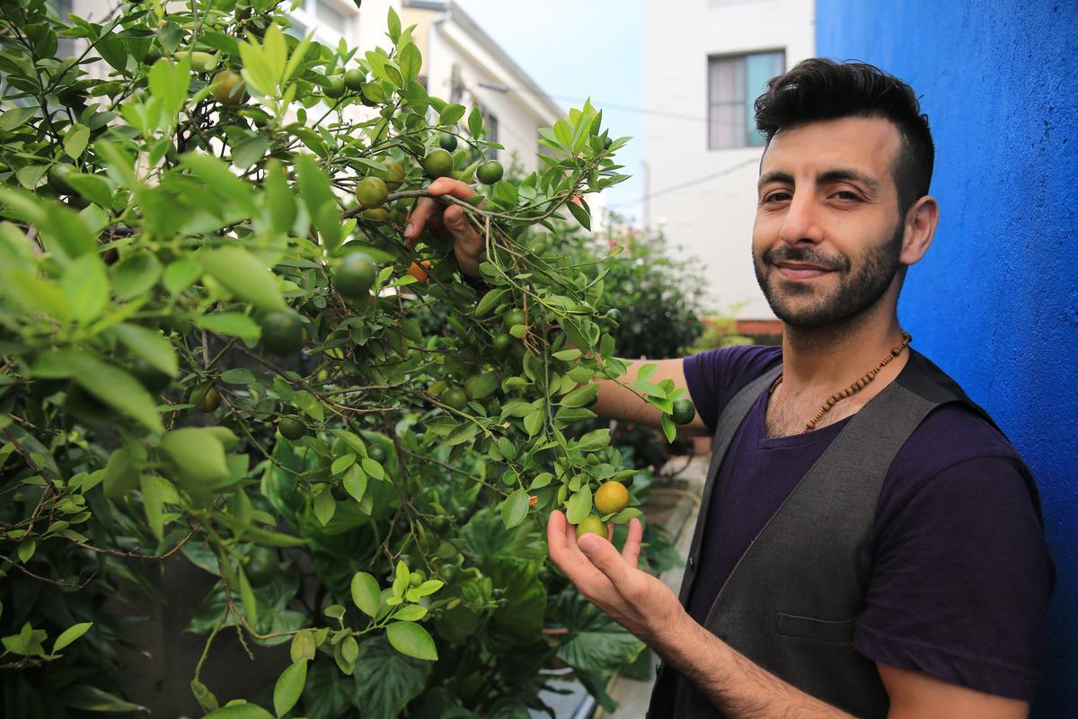 庭院蔬果是現成食材。