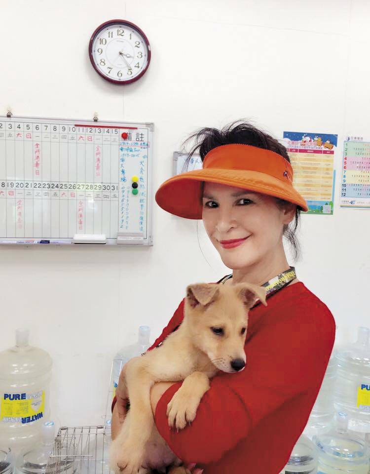 昔日70年代明星林珍奇,為了狗狗不惜放下貴婦身段,天天到八里動物之家當義工。