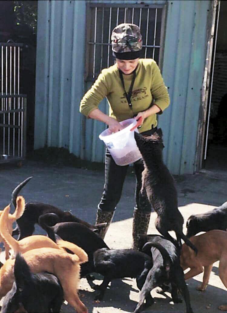 在八里動物之家當義工,林珍奇汗流浹背照顧沒家的狗狗。