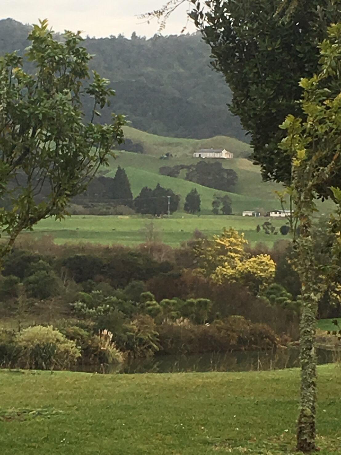 毛利族領地風景迷人。