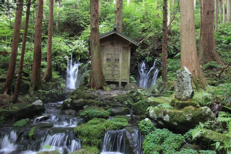 「胴腹瀑布」是相當少見的湧泉瀑布,美景讓人看得出神。(攝影:徐婉卿)