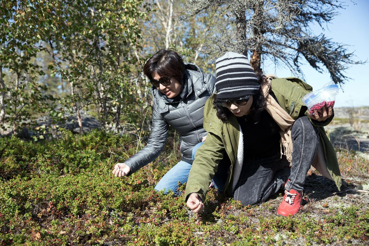 釣完魚後,還可以自己動手採摘新鮮的小紅莓。