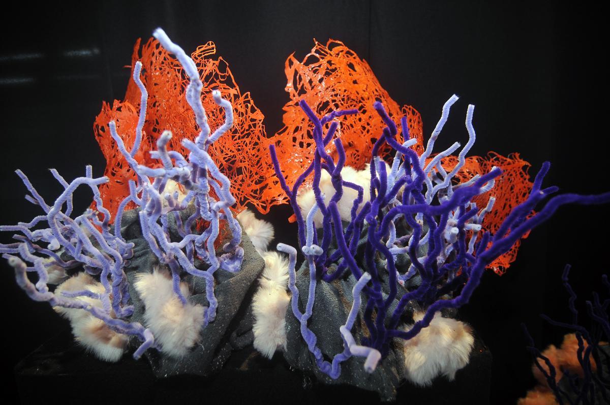 深白色的詩歌系列作品,讓觀眾先走入多采多姿的珊瑚礁世界,最後卻看到珊瑚礁顏色越變越單調,感受自然生命逐步走向凋零的景象。