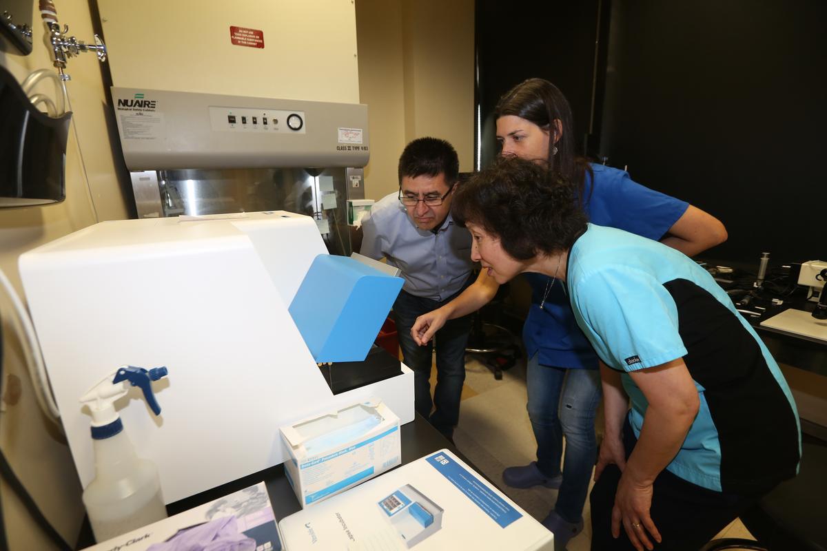 米塔利波夫實驗室人才來自各國,馬虹(前)來自中國,Nuria Marti-Gutierrez則來自西班牙。