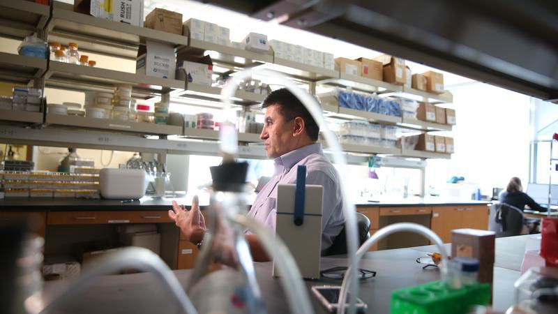 米塔利波夫實驗室成功刪除致病基因,是基因工程近來最轟動的大事,團隊還沒正式公布研究報告,媒體已經搶先曝光。