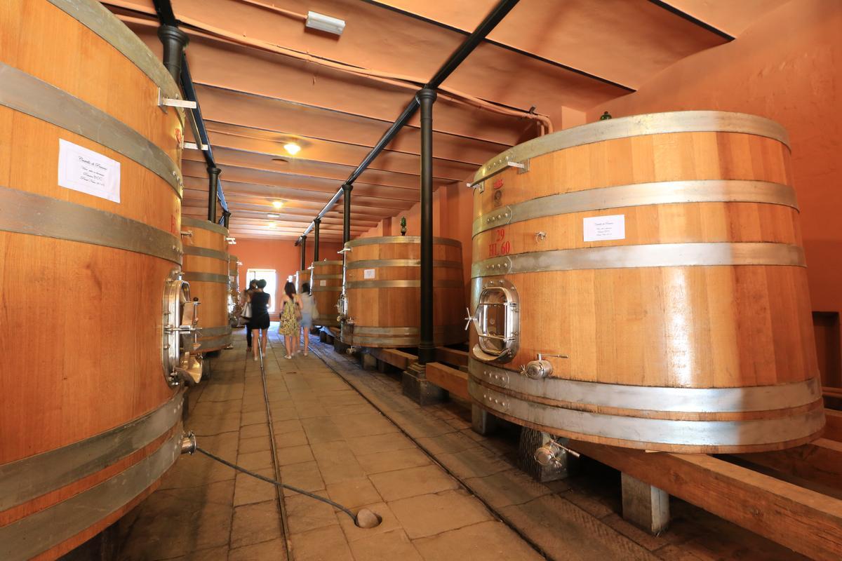 「波密諾莊園」是義大利首座重力酒窖,發酵後的酒汁接管以自然重力直達下方酒窖的酒桶。