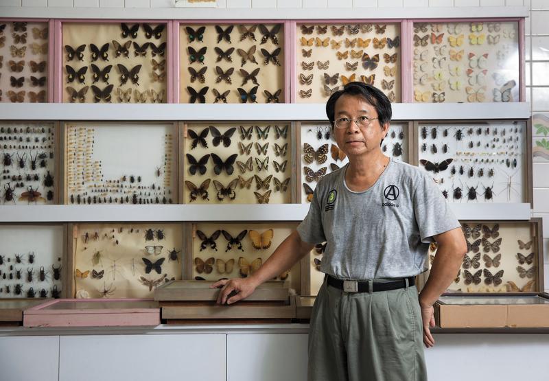 林文泰(圖)的小兒子林嘉智從小就喜歡觀察螞蟻和蟑螂,後來開始做標本收集昆蟲,大至巴掌大的蝴蝶,小到比螞蟻還小的不知名昆蟲,都成為他收藏的一部分。