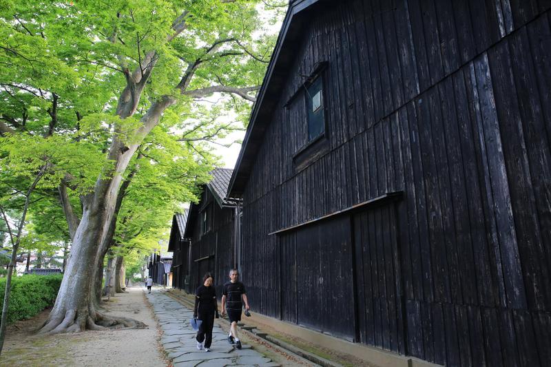 山居倉庫與一排高大欅木,一早就有不少居民來此散步。