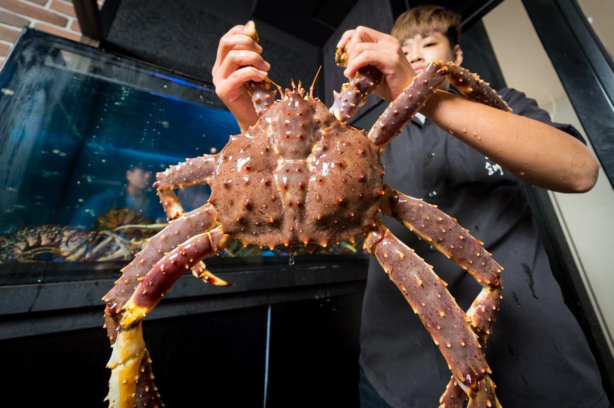 人較多且預算更高時可以選擇「北海道鱈場蟹」。(10,999元/4人套餐,價格會依海鮮大小、時價做調整。)