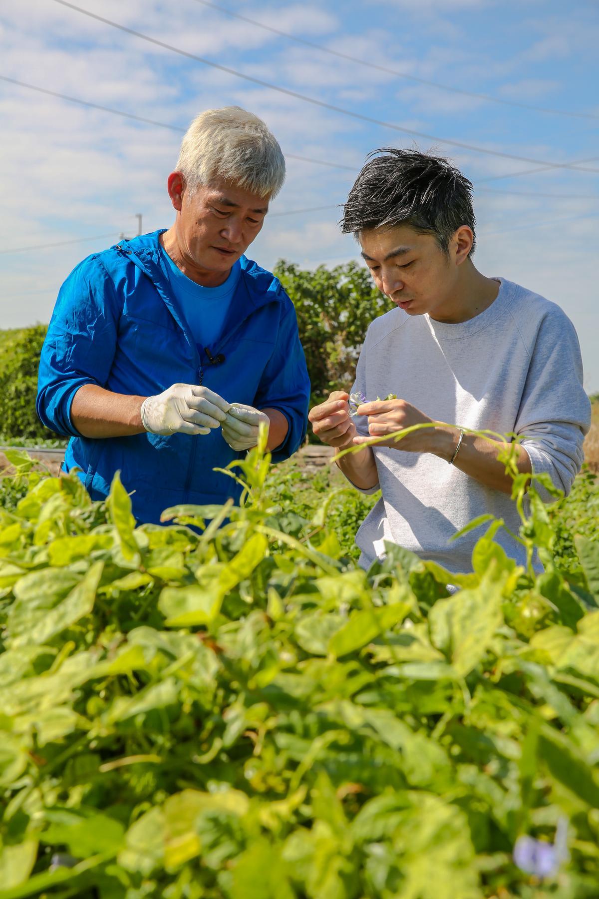 林泉(右)勤跑食材產地,他認為透過種植者林中智的分享能更認識食材的變化和風味。