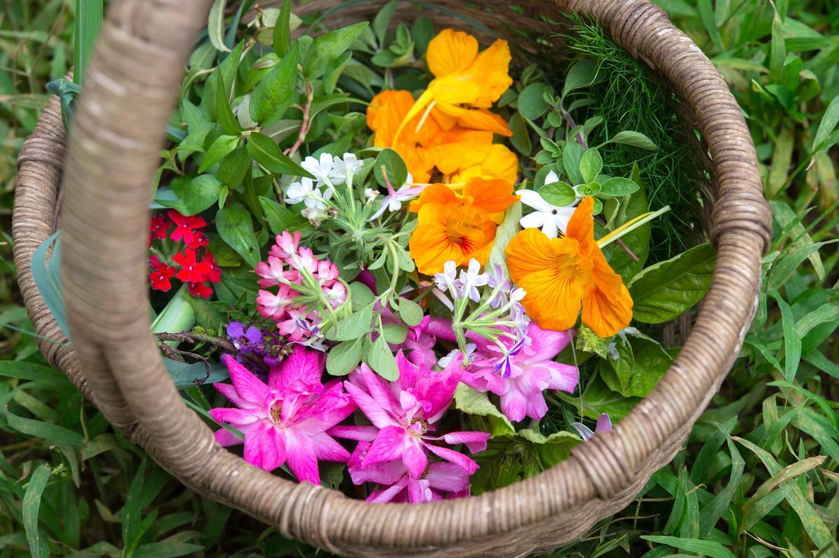 提籃裡現採的玫瑰、金蓮花、繁星花及薄荷等,是風姿綽約的食材。