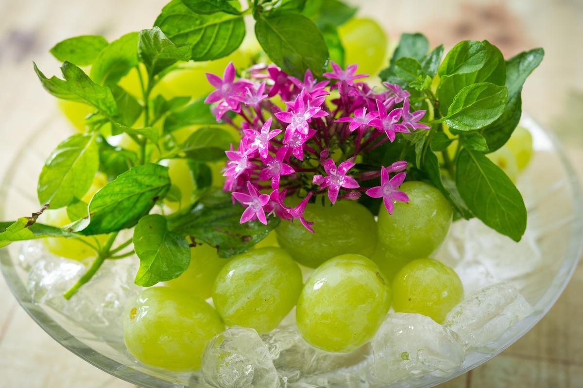 「花卉水果」以繁星花、薄荷搭配冰鎮葡葡,口感冰沁,濃涼感喚醒味覺。(800元套餐菜色)
