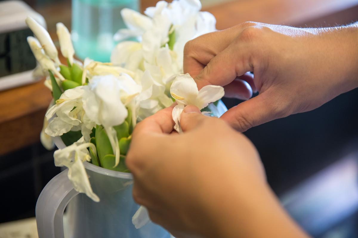 野薑花香氣濃郁,帶來熱帶氣息,李依錫認為是很能代表台灣的花香味道。
