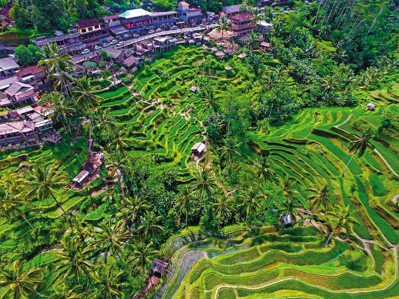 從空中看「德哥拉朗梯田」, 像一幅巨大的油畫。