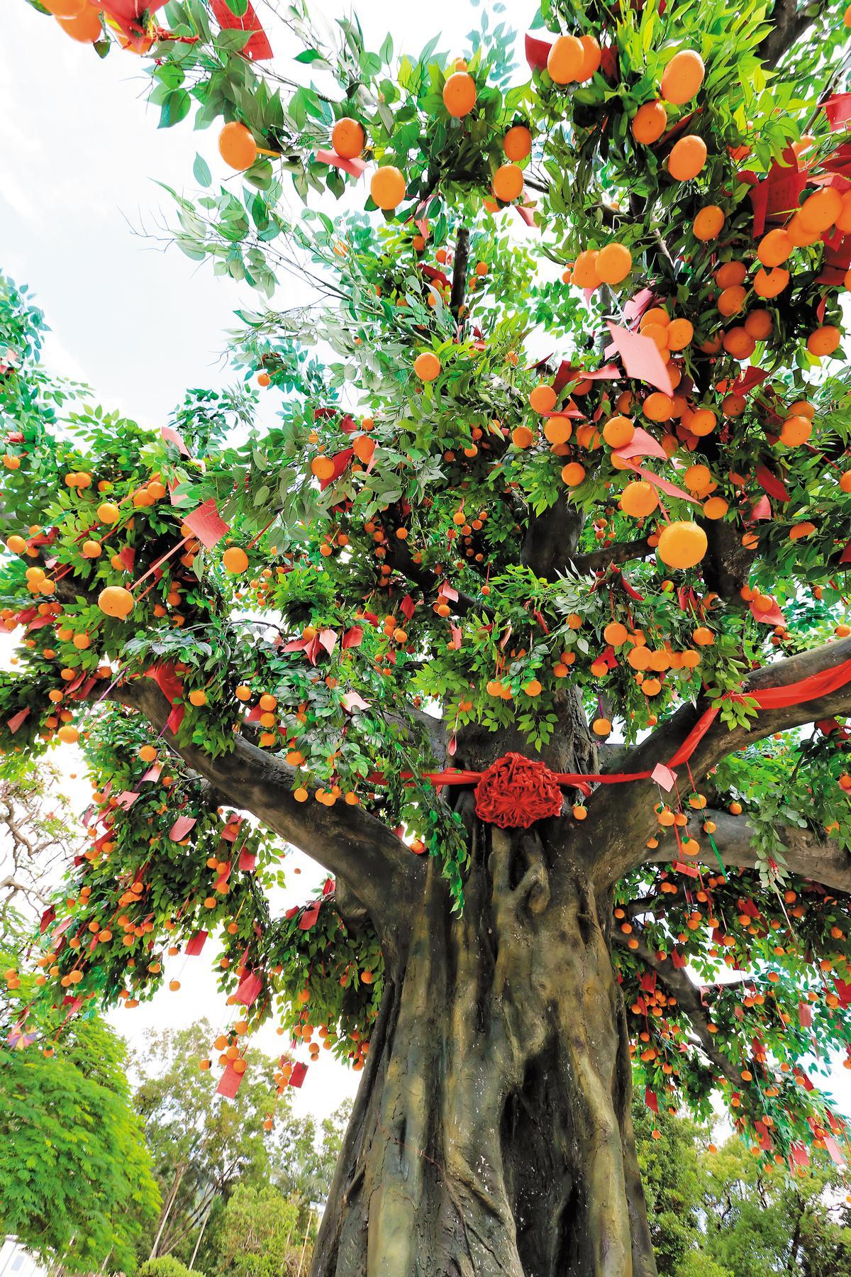 「林村許願樹」是棵徹頭徹尾的人造樹,乍看有種荒謬的奇幻感。